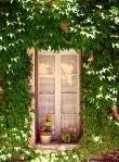 Window Vines France