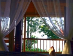 Cabin Costa Rica