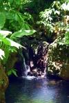 Swimming Hole Costa Rica